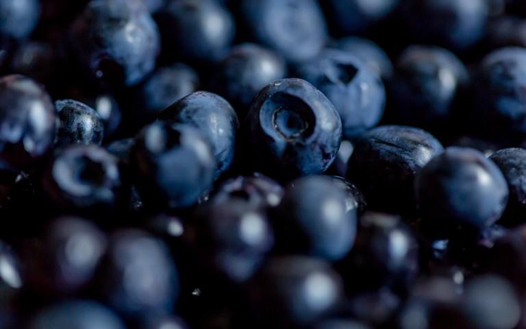 Superfoods in Finnland selber ernten