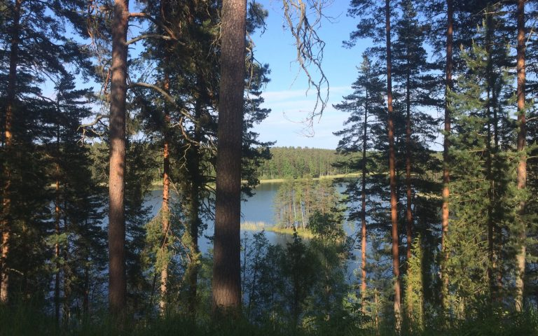 12 Surprising Things In Which Finland Is The Best In The World