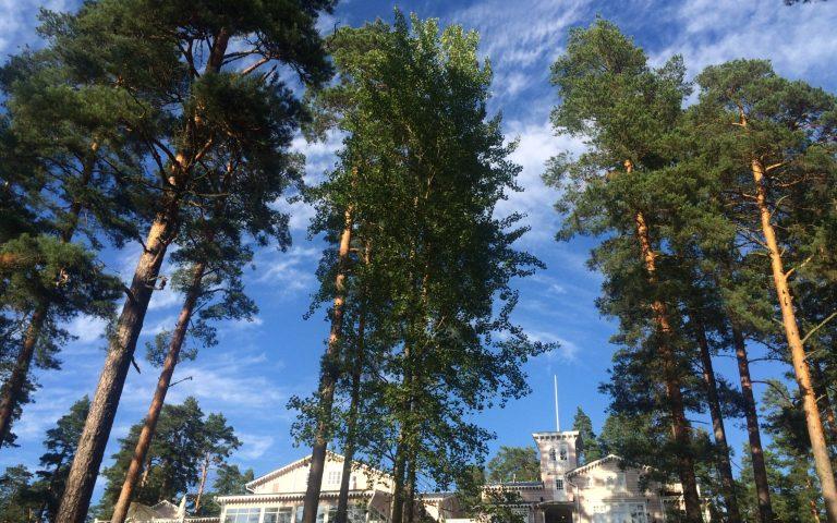 Ein Haus im Wald – Hotel Punkaharju