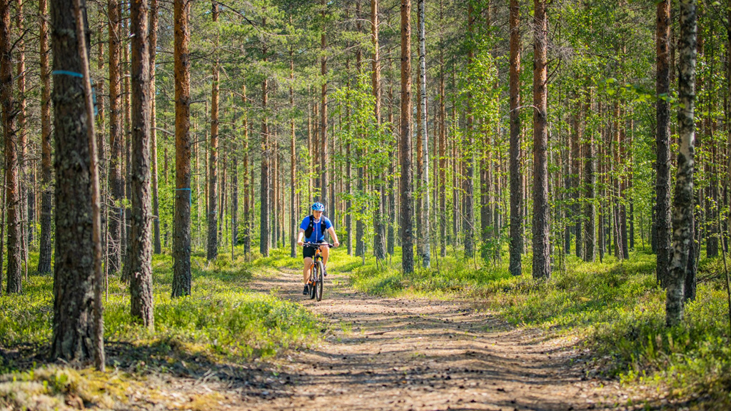 Pyöräilijä pyöräilee metsässä